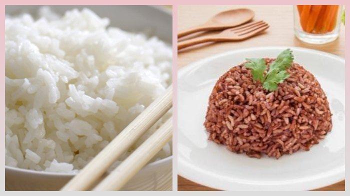 Lebih Sehat Mana Nasi Merah atau Nasi Putih? Simak Penjelasannya