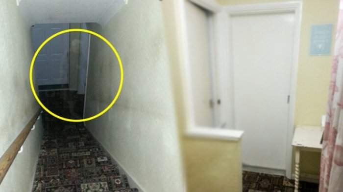 Setiap Malam Ada Ketukan Pintu Di Lantai Bawah, Penghuni Rumah Kaget Saat Bertemu Sosok Ini