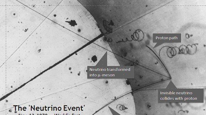 Hadirkan Pakar, IPB University Berhasil Ungkap Misteri Neutrino