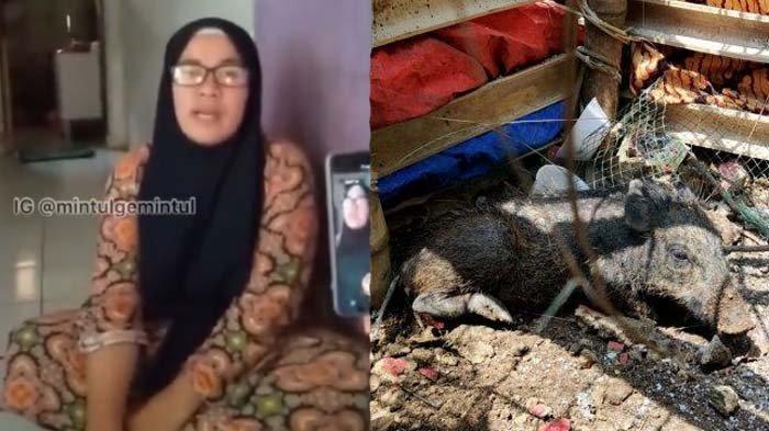 Diusir Gara-gara Tuding Tetangga Babi Ngepet, Bu Wati Siap Mati atau Hidup Dipenjara : Saya Ikhlas