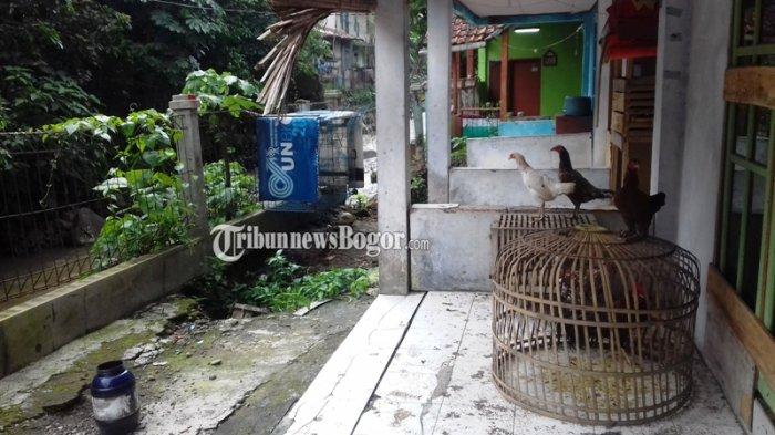 Tergerus Aliran Sungai, Rumah Warga di Kampung Palasari Bogor Terancam Longsor