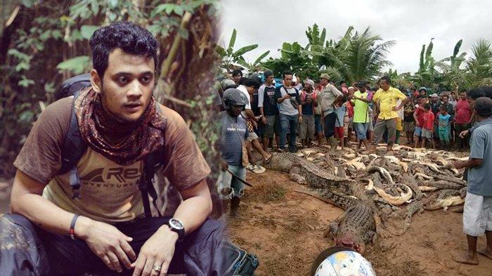292 Ekor Buaya di Sorong Dibantai Warga, Panji Petualang: Andai Hukum Kita Seperti Negara Tetangga