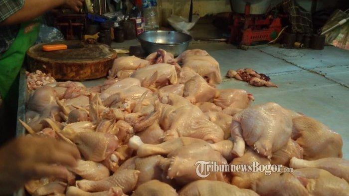Harga Daging Ayam di Pasar Anyar Kota Bogor Turun, Segini Harganya Sekarang