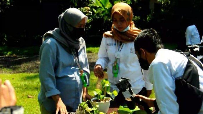 Luncurkan Wisata Edukasi Virtual, Kebun Raya Bogor Ajak Belajar dan Wisata Dari Rumah