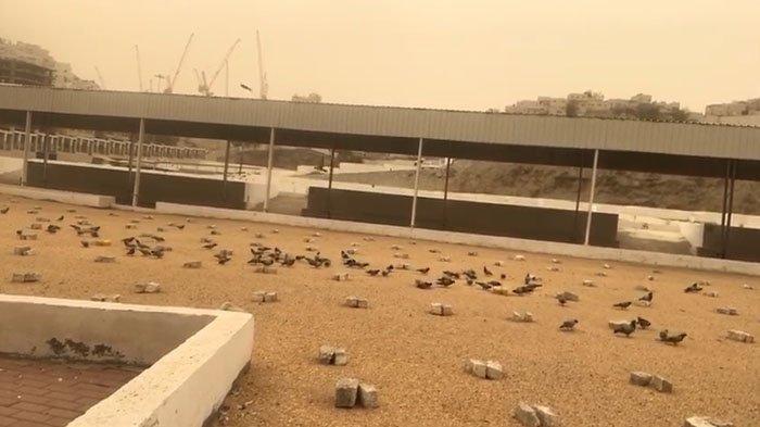 Begini Suasana Pemakaman Ma'la Tempat Mbah Moen Dimakamkan, Tumpukan Batu Jadi Pengganti Nisan
