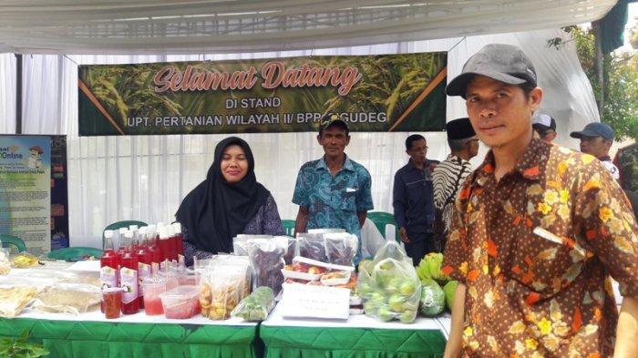 Petani di Jasinga Sering Alami Kekeringan, Berharap Dapat Perhatian dari Bupati Bogor