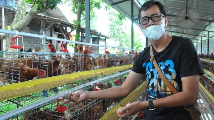 Cerita Peternak Ayam Petelur di Bogor Hadapi Kenaikan Harga Pakan, Kuliatas Produksi Tetap Dijaga