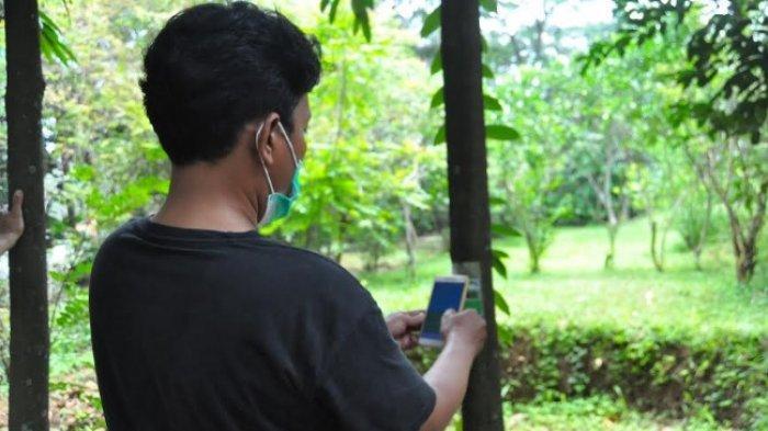 Digitalisasi Pohon Langka, GPA Beri Barcode Disetiap Pohon Yang Ditanam