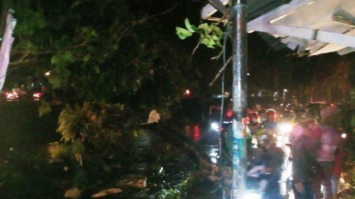 Imbas Pohon Tumbang, Lalu Lintas di Puncak Masih Padat Merayap