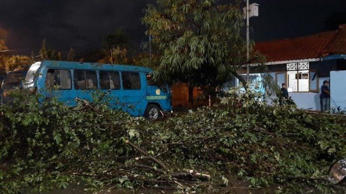 Diguyur Hujan dan Angin Kencang, Pohon Tumbang Dekat Terminal Laladon Timpa Sepeda Motor