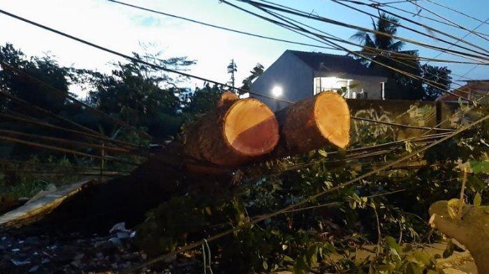 Tiang Telephon di Cibinong Nyaris Roboh, Batang Pohon Tumbang Masih Nyangkut di Kabel