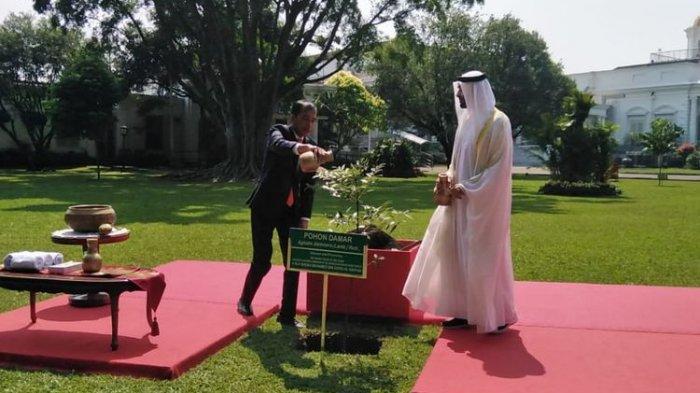 Tak ikut Pertemuan dengan Prabowo dan Megawati, Jokowi Sambut Putra Mahkota Abu Dhabi di Bogor