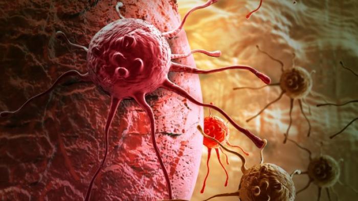 Tak Cuma Lezat, 8 Makanan Ini Dipercaya Ampuh Hancurkan Sel Kanker