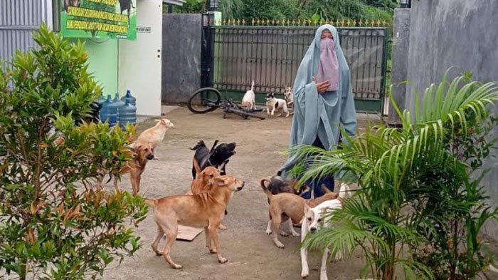 Shelter Anjing Milik Suhesti di Desa Gunung Mulya Bogor Akan Dipindahkan