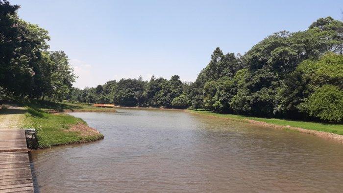 Liburan di Kebun Raya Bogor, Warga Nikmati Suasana Sejuk Danau Dora