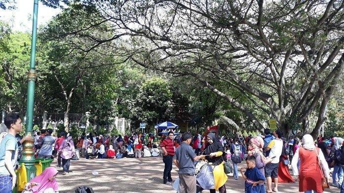 Taman Margasatwa Ragunan Ditutup Sementara Bagi Pengunjung, Karyawan Tetap Bekerja