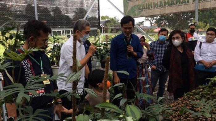 Mentan RI Borong Sejumlah Tanaman Hias yang Lagi Hits di Kota Bogor, Segini Harganya