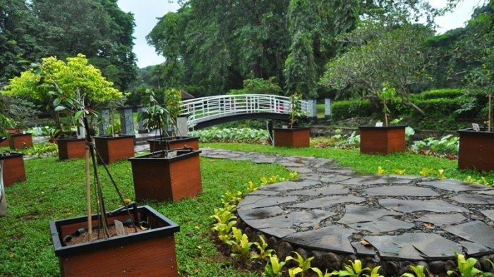 Luncurkan Empat Taman Baru, Kebun Raya Bogor Perkaya Koleksi Botani Asli Indonesia