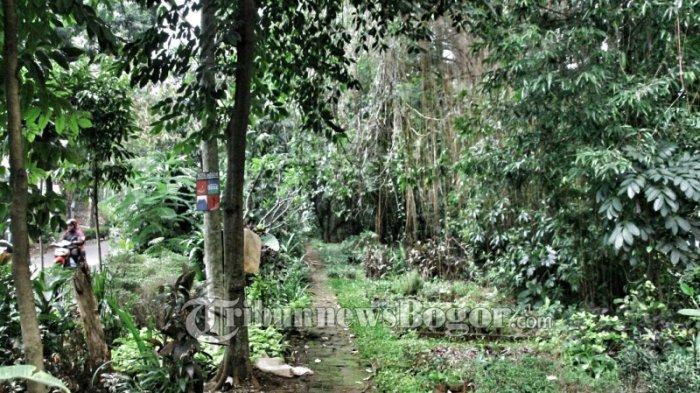 Taman Ciremai Ujung Mirip Hutan, Siang Saja Seram Apalagi Malam