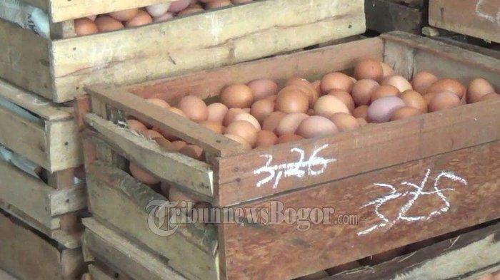 Harga Telur Melambung, Pemerintah Diminta Segera Atasi Kenaikan Harga