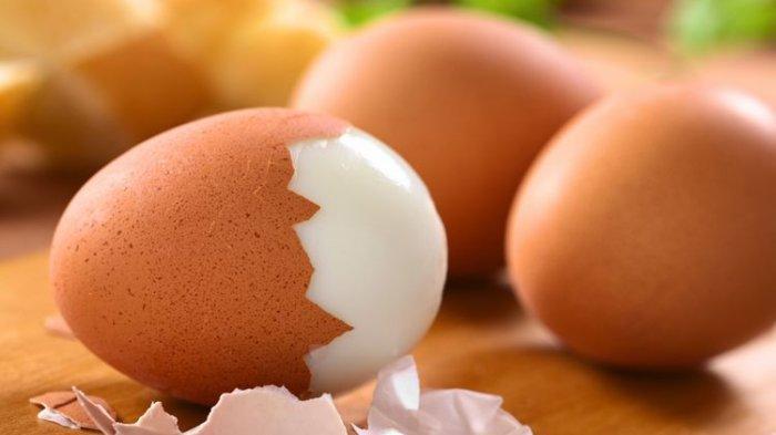 Telur Bisa Jadi Pilihan Menu Sarapan yang Sehat, Ini 6 Manfaatnya untuk Tubuh