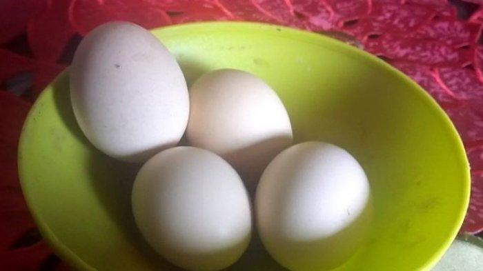 Heboh Peredaran Telur Palsu di Prabumulih, Begini Penjelasan Polisi