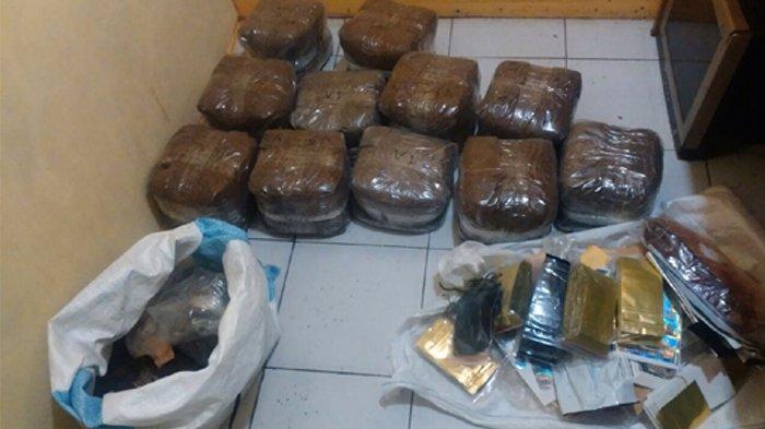 Temuan 2 Karung Tembakau Ganesha, BNN Kabupaten Bogor Akui Belum Pernah Lihat Bentuknya