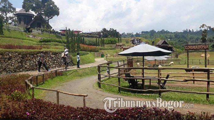 Tempat Wisata Berkuda di Bogor, Pilihan Liburan Akhir Pekan