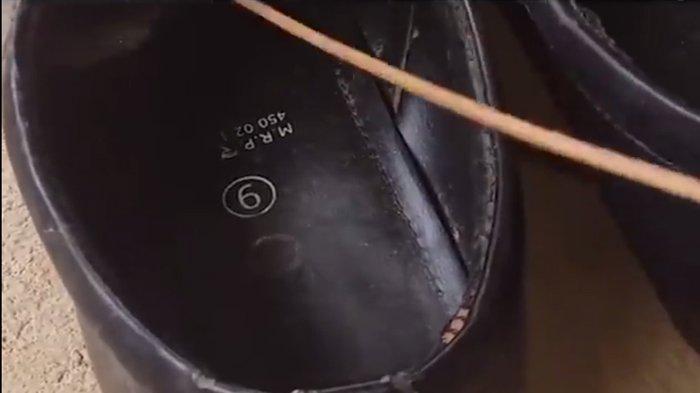 Hati-Hati Jika Mau Pakai Sepatu, Lihat Apa Yang Keluar Dari Dalam Setelah Dicungkil Kayu !