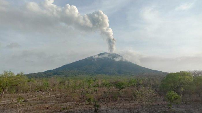 Diduga Lari ke Hutan, Lima Bocah Dilaporkan Hilang Pasca Meletusnya Gunung Ile Lewotolok