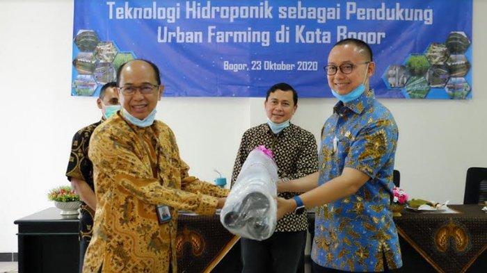 Eddy Soeparno Fasilitasi Teknologi Hidroponik untuk Urban Farming di Kota Bogor