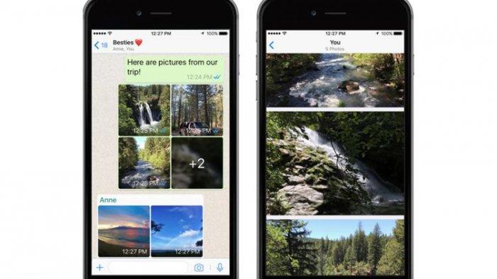Cara Menggunakan Fitur View Once di WhatsApp, Makin Mudah Kirim Foto dan Video