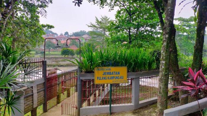 Menilik Kampung Wisata Cinangneng Bogor, Suasananya Sejuk Dihiasi Hamparan Sawah
