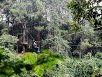 bogor-treetop-zipline-adventure.jpg