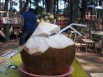 es-kelapa-pancar.jpg