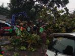 evakuasi-korban-pohon-tumbang.jpg