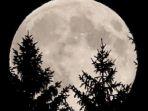 gerhana-bulan_20180131_085217.jpg