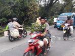 jalan-raya-ciapus-kota-batu-kabupaten-bogor.jpg