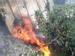 jembatan-ma-salmun-terbakar_20180920_114511.jpg