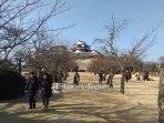 kastil-matsuyama.jpg
