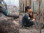 korban-kebakaran-hutan.jpg