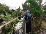 limbah-styrofoam-penuhi-saluran-air-situ-citongtut-desa-cicadas-gunungputri-kabupaten-bogor.jpg