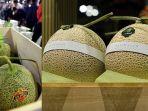 melon-yubari_20180527_214838.jpg