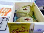 melon-yubari_20180531_155221.jpg