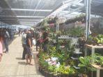 pasar-tanaman-terbesar.jpg