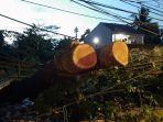 pohon-tumbang-yang-tersangkut-dikabel-jalan-raya-jakarta-bogor-km-46.jpg