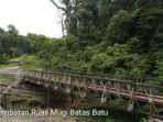 proyek-jembatan-papua.jpg