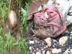 tengkorak-kepala-manusia-ditemukan-di-wilayah-kampung-sampora.jpg