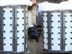 urban-farming.jpg