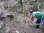 warga-menggali-mayat-korban-banjir-di-jasingan-bogor.jpg